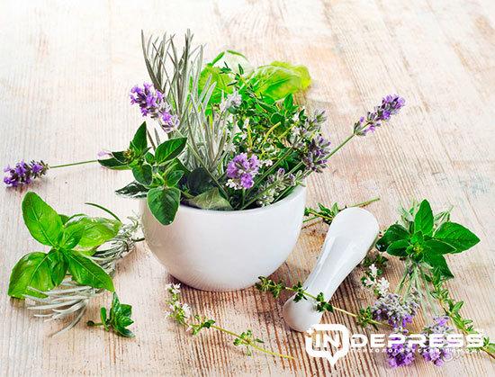 Любисток от алкоголизма рецепт настойки: применение растения без ведома больного