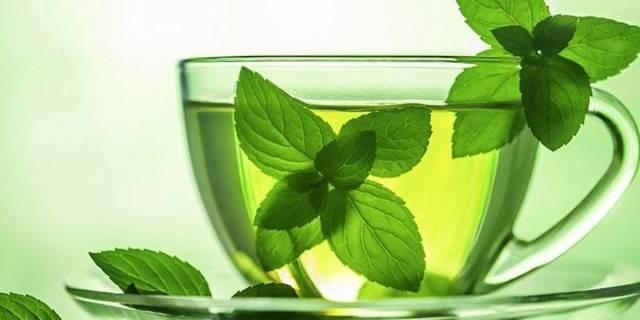 Народные средства от алкоголизма – самые эффективные и безопасные при лечении в домашних условиях