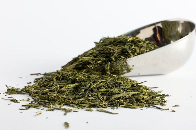 Трава кукольник от алкоголизма как принимать, заваривать и рассчитать дозировку при лечении