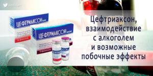 Цефтриаксон и алкоголь – можно пить в период приема антибиотиков?